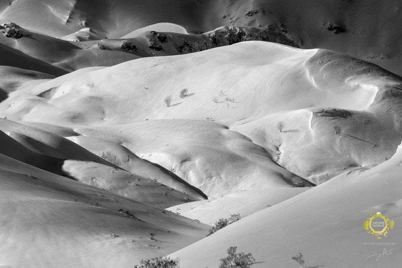 Montañas nevadas en León - Territorio Salvaje.es