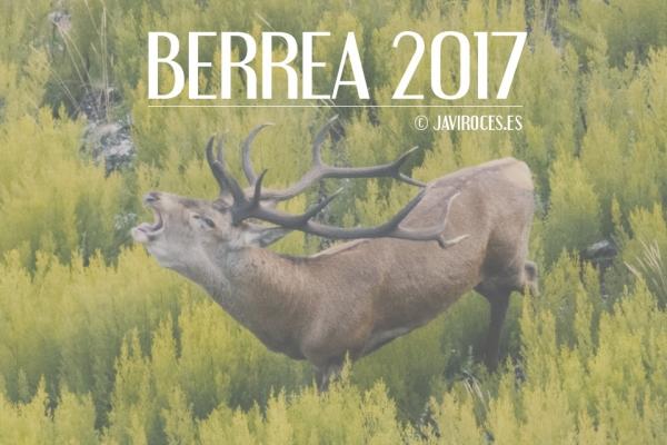 Berrea 2017